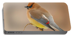 Cedar Wax Wing Portable Battery Charger by Carl Shaw
