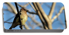 Cedar Wax Wing Portable Battery Charger by David Arment