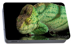 Closeup Parson Chameleon, Calumma Parsoni Orange Eye On Black Portable Battery Charger by Sergey Taran