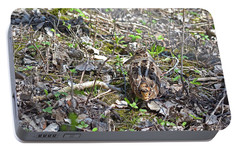 Eye-contact With The American Woodcock Portable Battery Charger by Asbed Iskedjian
