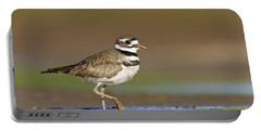 Killdeer Walking By Portable Battery Charger by Bryan Keil