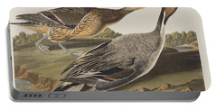 Pin-tailed Duck Portable Battery Charger by John James Audubon