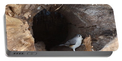 Tufted Titmouse In A Log Portable Battery Charger by Ted Kinsman