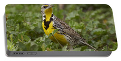 Western Meadowlark Portable Battery Charger by Doug Herr