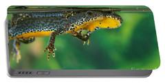 Alpine Newt Triturus Alpestris Portable Battery Charger by Gerard Lacz