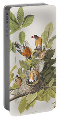 American Robin Portable Battery Charger by John James Audubon