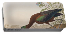 Glossy Ibis Portable Battery Charger by John James Audubon