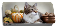 Cat And Pumpkins Portable Battery Charger by Nailia Schwarz
