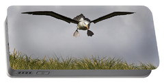 Black-browed Albatross Portable Battery Charger by Jean-Louis Klein & Marie-Luce Hubert
