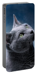 Russian Blue Cat Portable Battery Charger by Nailia Schwarz