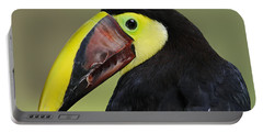 A Bird For His Bill.. Portable Battery Charger by Nina Stavlund