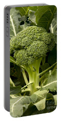 A Broccoli Crown Portable Battery Charger by Inga Spence