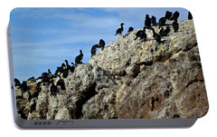 A Gulp Of Cormorants Portable Battery Charger by Sandy Taylor