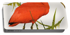 A Scarlet Ibis From South America Portable Battery Charger by Kenneth Lilly