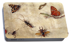A Study Of Various Insects, Fruit And Animals Portable Battery Charger by Jan Van Kessel the Elder