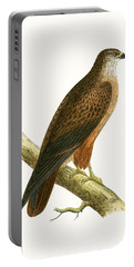 African Buzzard Portable Battery Charger by English School