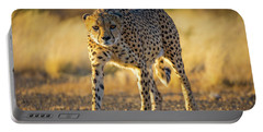 African Cheetah Portable Battery Charger by Inge Johnsson