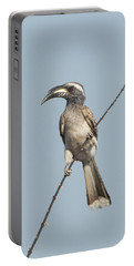 African Grey Hornbill Tockus Nasutus Portable Battery Charger by Panoramic Images