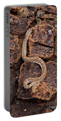 African Rock Python Portable Battery Charger by John Cancalosi