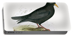 Alpine Chough Portable Battery Charger by English School