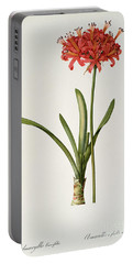 Amaryllis Curvifolia Portable Battery Charger by Pierre Redoute