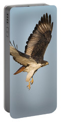 Augur Buzzard Buteo Augur Flying Portable Battery Charger by Panoramic Images