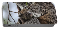Baby Koala V2 Portable Battery Charger by Douglas Barnard