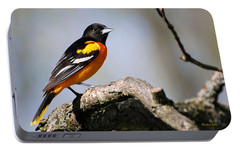 Baltimore Oriole Portable Battery Charger by Christina Rollo