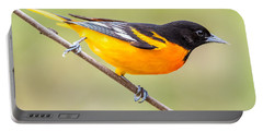 Baltimore Oriole Portable Battery Charger by Paul Freidlund