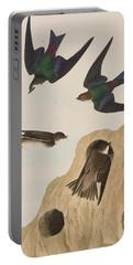 Bank Swallows Portable Battery Charger by John James Audubon
