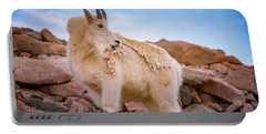Billy Goat's Scruff Portable Battery Charger by Darren White