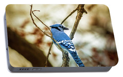 Blue Jay Portable Battery Charger by Robert Frederick