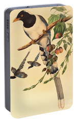 Blue Magpie, Urocissa Magnirostris Portable Battery Charger by John Gould