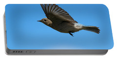 Bluebird Glide Portable Battery Charger by Mike Dawson