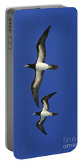 Brown Booby Sula Leucogaster Portable Battery Charger by Gerard Lacz