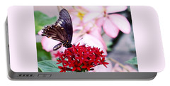 Black Butterfly On Red Flower Portable Battery Charger by Sandy Taylor