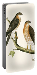 Calcutta Sparrow Hawk Portable Battery Charger by English School