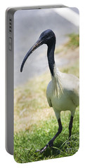 Carpark Ibis Portable Battery Charger by Jorgo Photography - Wall Art Gallery