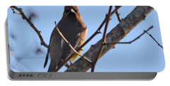 Cedar Wax Wing On The Lookout Portable Battery Charger by Barbara Dalton