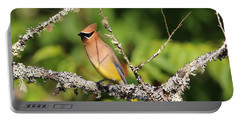 Cedar Waxwing  Portable Battery Charger by Carol R Montoya