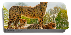 Cheetahs Three Portable Battery Charger by Chris Thaxter