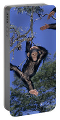 Chimpanzee Young Portable Battery Charger by Martin Harvey