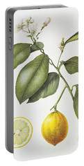 Citrus Bergamot Portable Battery Charger by Margaret Ann Eden