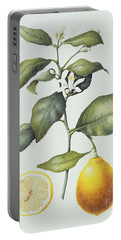 Citrus Lemon Portable Battery Charger by Margaret Ann Eden