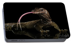 Close-up Varanus Rudicollis Isolated On Black Background Portable Battery Charger by Sergey Taran