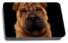 Closeup Funny Sharpei Puppy Isolated On Black Portable Battery Charger by Sergey Taran