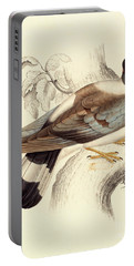 Columba Leuconota, Snow Pigeon Portable Battery Charger by Elizabeth Gould
