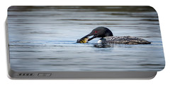 Common Loon Portable Battery Charger by Bill Wakeley