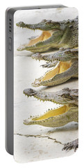 Crocodile Choir Portable Battery Charger by Jorgo Photography - Wall Art Gallery