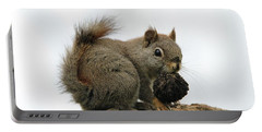 Cute Squirrel Snacking Portable Battery Charger by Dan Sproul